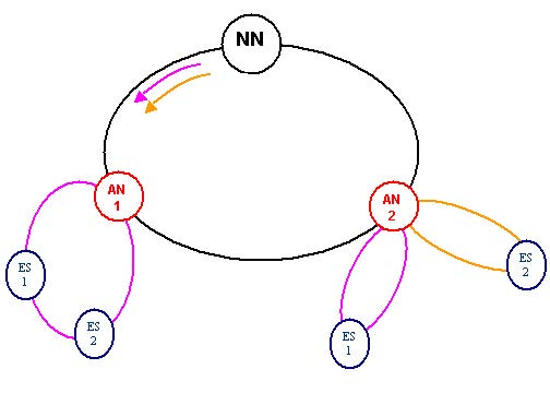 Optical System - Figure 1 - Ring network with 4 end stations (subscribers) and 2 access nodes